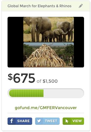 Elephant Go Fund Me 2015 Campaign