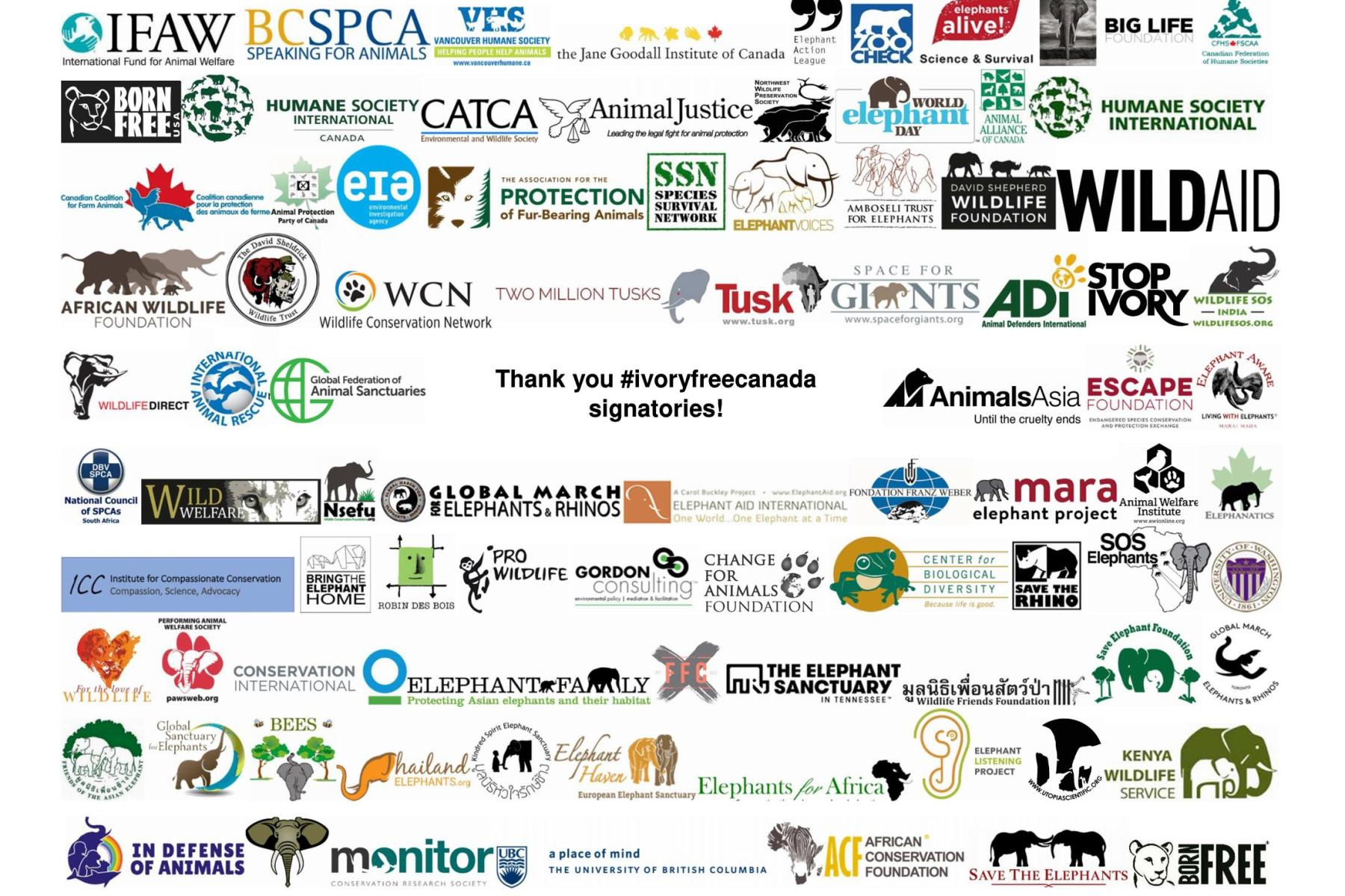 Thank you to the 95 signatories on the letter to government thank you ivoryfreecanada letter signatories expocarfo Choice Image